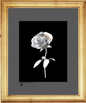 rosesbLSIdv16x20FR.png