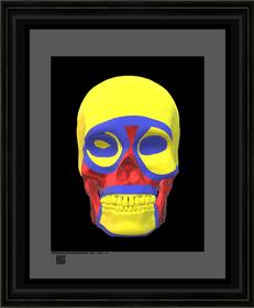 skullartmcml6162021s11X14BFR.png