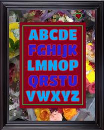 framed16X20abchdsfv2019.png