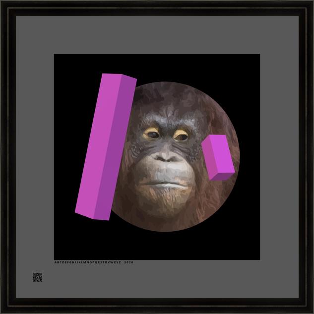 hominidsoranrdprp3d2020V16X16FR.png