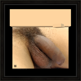 HOMOGEOSQUCTRL16x16fr.png