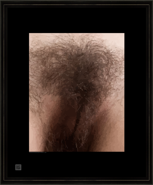 genitalfemhryV16X20FR.png