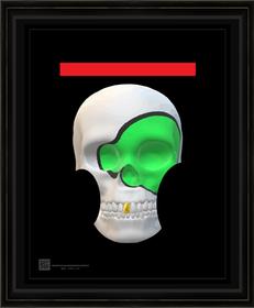 skullart442021s11X14BFR.png