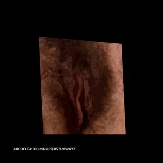 vagina0ne12X12.png