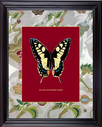 framedbtrflymaron16X20.png