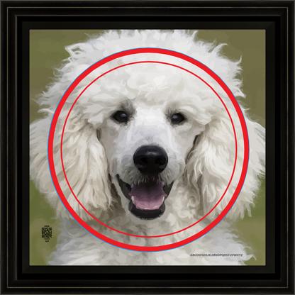 dogcrazwhtpoodleap11202012x12BFR.png