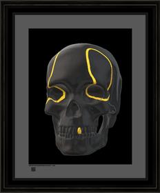 skullblackwglatv16x16BFR.png