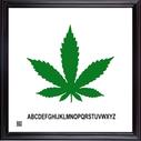 framedcannabisgreen12X12.png