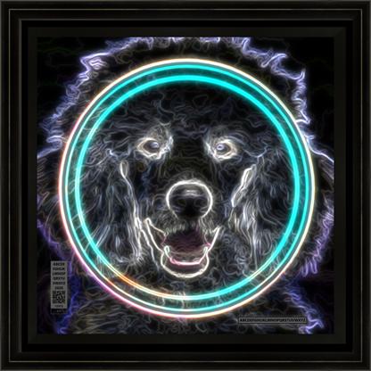 dogcrazypneon11202020v12x12bfr.png