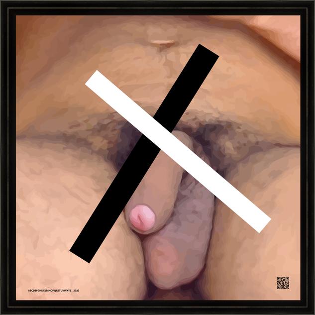 penis2020-05-01V16X20BW2020FR.png