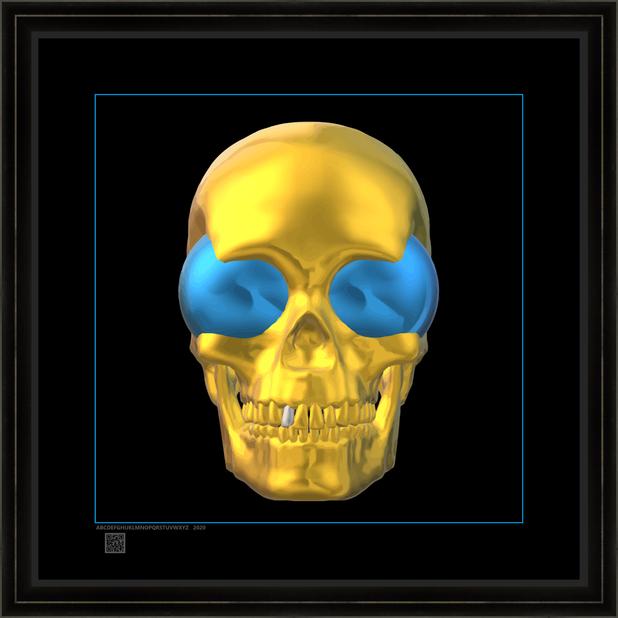skullwstv16x16BFR.png