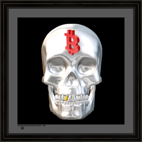 skullwbcv16x16bfr.png