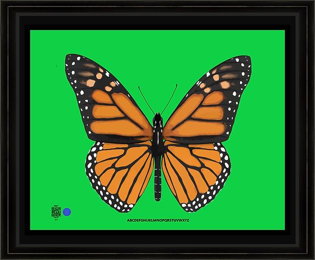 butterflyBC162021v11X14BFR.png