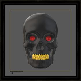 skullbogrigtv24x24bfr.png