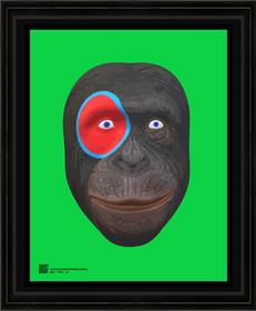 hominidprt6232021s11X14BFR.png