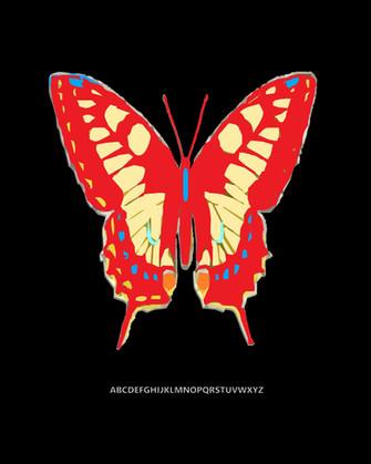 butterflyredblack028x10.jpg
