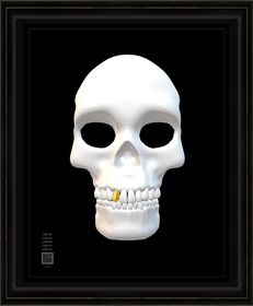 skullwhtwgt11x14BFR.png
