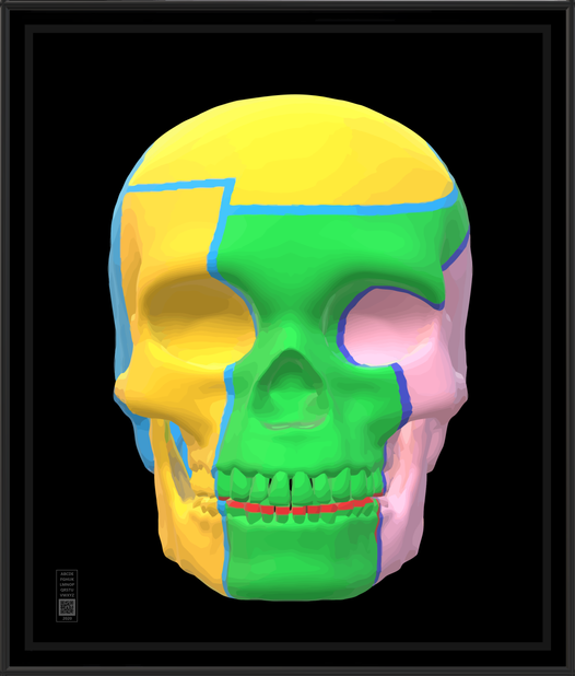 skull3dygp20x24BFR.png