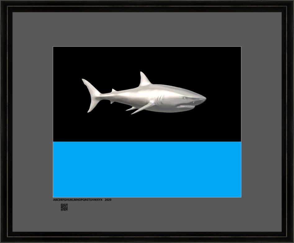 sharkspone16X20FR.png