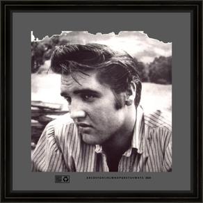 Elvis_Presley_TTBWV16X16FR.png