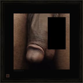penisblackcut2020-04-06V16X16fr.png
