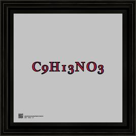 TEXTC9H13NO35262021s12x12bfr.png