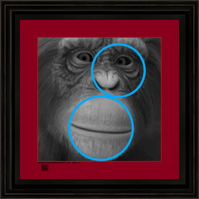 hominidch4152021sCUBW12x12BFR.png