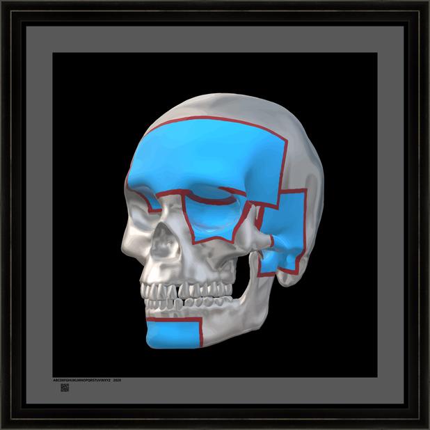 skullsswbamolv24x24BFR.png