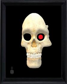 skull-3dv16x20STRTfr.png