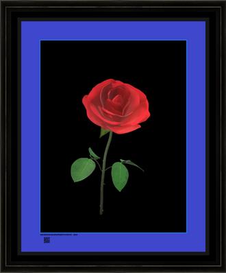 rosesgbbgrdbbv16x20BFR.png