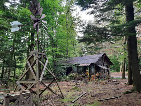 DANCE ON LOCATION 023: an abandoned film set in Hensol Woods, Wales, UK