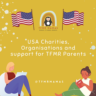 Copy of USA Charities, Orgs and Support.