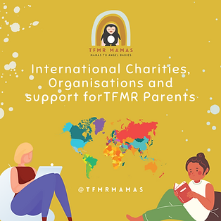 International Charities, Orgs and Suppor