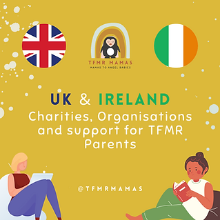 Copy of UK & Ireland Charities, Orgs and