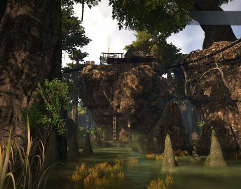 SouthFetidSwamp_p2_002.JPG