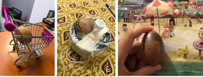 AP Psychology: Egg Baby Project