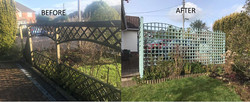Trellis replaced in Sidmouth