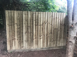 fencing Service in Westhill, Ottery ST Mary