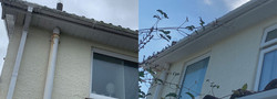Fasia's & soffits cleaning service