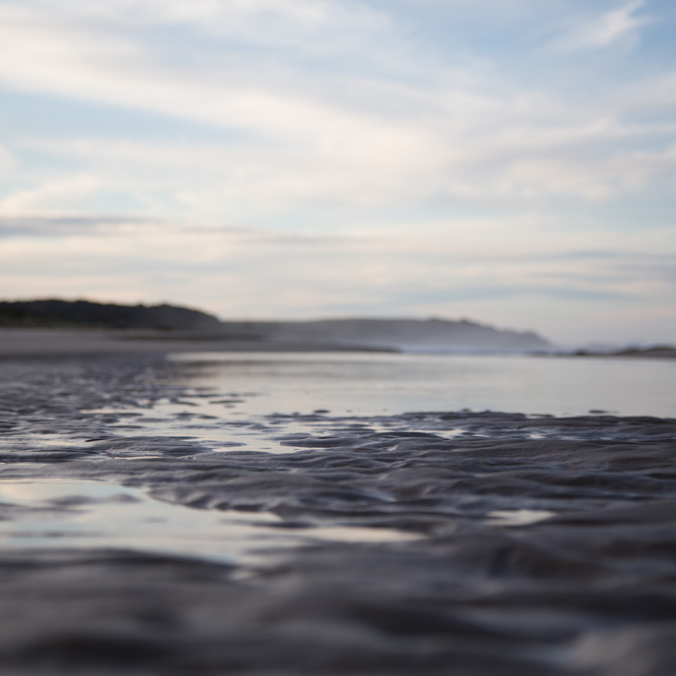 Rippled Sands