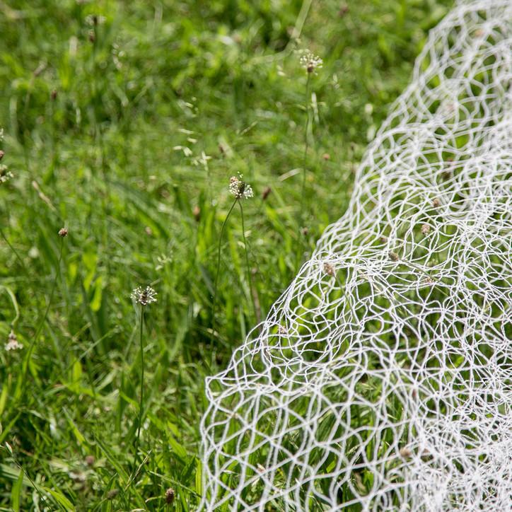 Grass Net