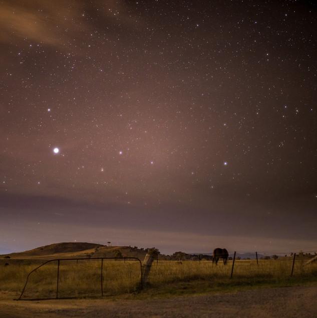 Paddock at Night