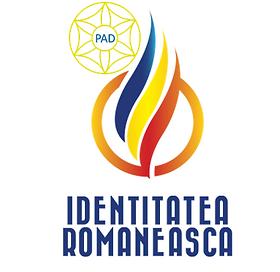 IR-PAD-logo-white.png