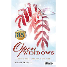 OpenWindows.jfif