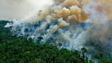 amazon fires.jpg