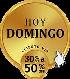 29.SELLO DOMINGO .png
