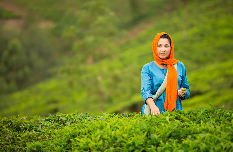 Tea picker Munnar
