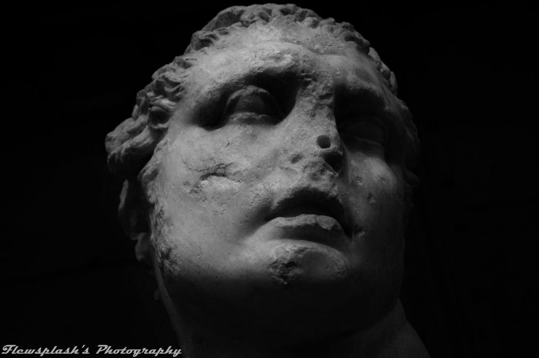 Aged Portrait, Centrale Montemartini