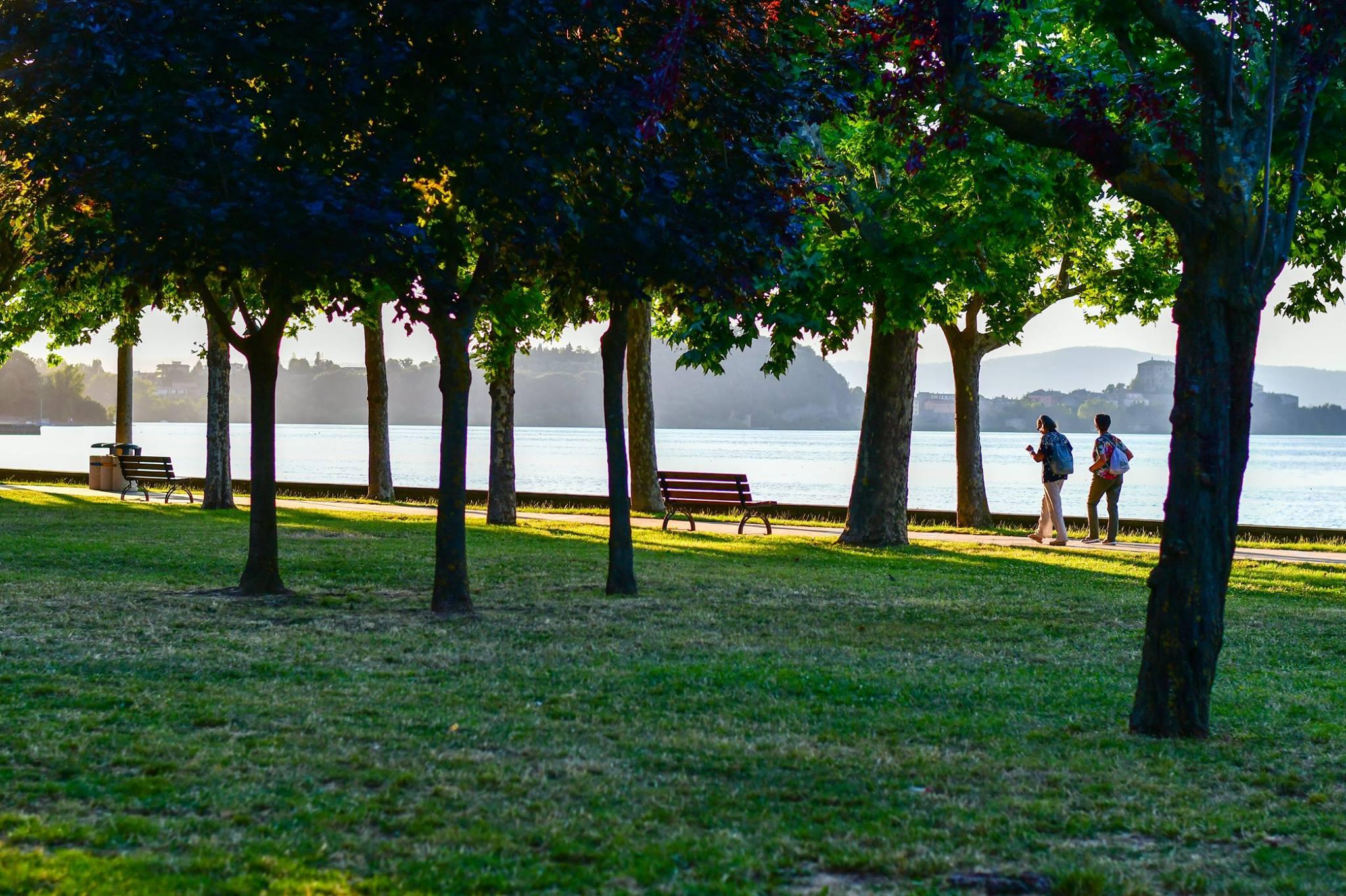 Hopper-Like in Bolsena Lake