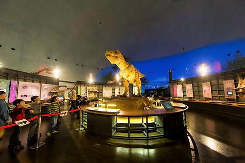 ③-4-1 ④【勝山】恐竜博物館+化石発掘体験+えちぜん鉄道&勝山市内バス1日フ